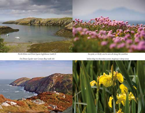 Best Anglesey walks
