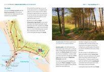 Newborough Forest and Llanddwyn Island walk